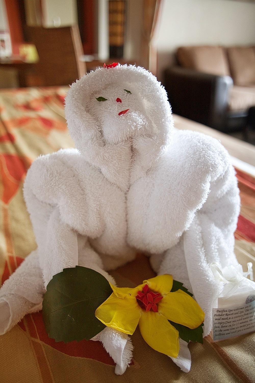 Mönch, Busenwunder, Affe? Alles ist möglich in Costa Rica.